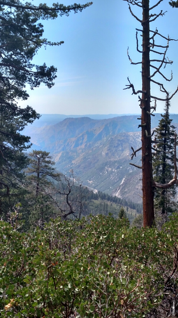 wpid img 20150419 144528806 hdr1 - LFTR - US Yosemite Natl Park - Pictures truly are worth a thousand words